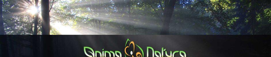 Seminario Anima Natura, Corso Intensivo Esperienziale Per Il Risveglio Della Coscenza Naturale