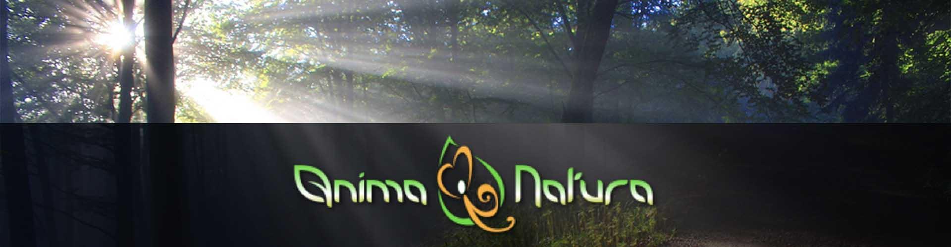 Seminario Anima Natura relatore Germano Caroli presso B&B & Meditation Center Zorba Il Buddha Passerano Marmorito Asti