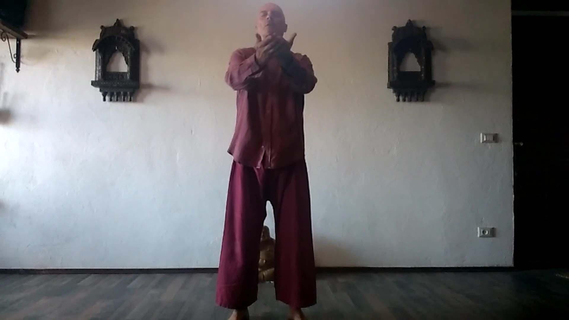 meditazione Il Movimento Nei Chakra di Vipal Antonio Gianfranco Gualdi B&B & Meditation Center ZOrba Il Buddha Passerano Marmorito (AT)