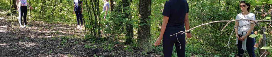 19-20 Giugno Percorso Shinrin-Yoku: Il Bagno Di Foresta Ritiro Di Meditazione  Nel Bosco