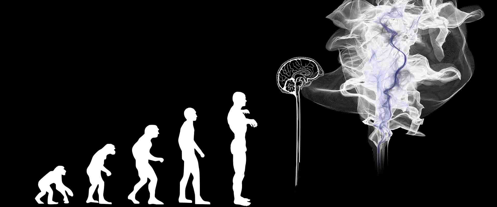 La terza evoluzione umana Vipal Antonio Gianfranco Gualdi centro di meditazione Zorba Il Buddha