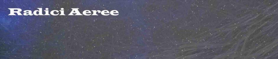 Radici Aeree – Durata 29:00