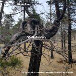 Smhe album musica V.A.G.G. Vipal Antonio Gianfranco Gualdi