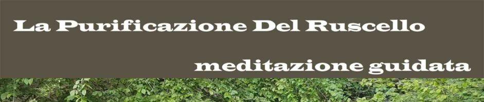La Purificazione Del Ruscello – Meditazione Guidata Di Pulizia E Benessere